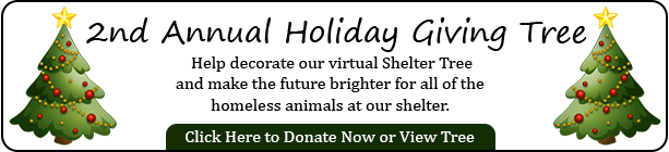 Virtual Giving Tree for homeless animals
