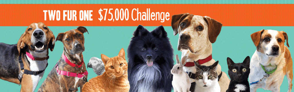 Two Fur One! $75,000 Challenge