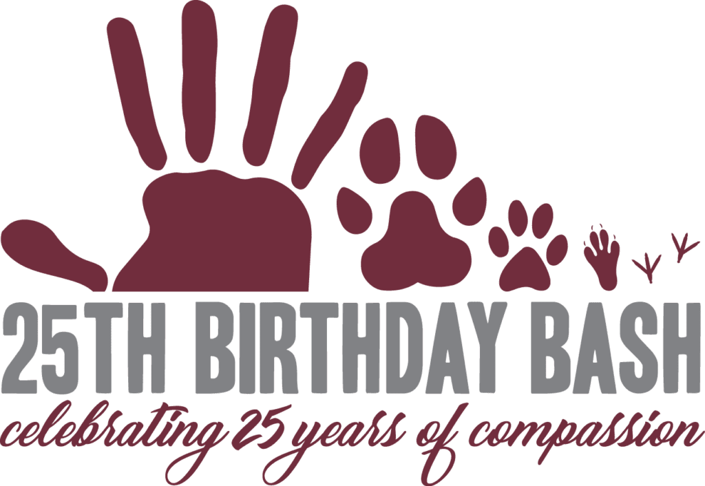 25th Birthday Bash @ The Colonial Theatre | Pittsfield | Massachusetts | United States