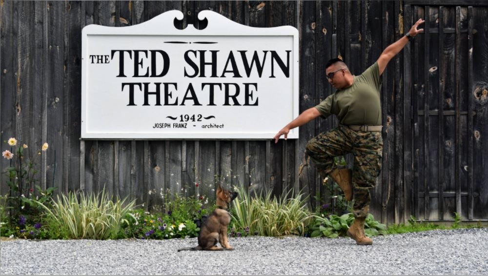 Jacob's Pillow Dog Dance @ The Great Lawn at Jacob's Pillow | Becket | Massachusetts | United States