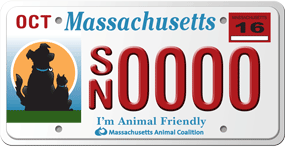 MAC license plate program