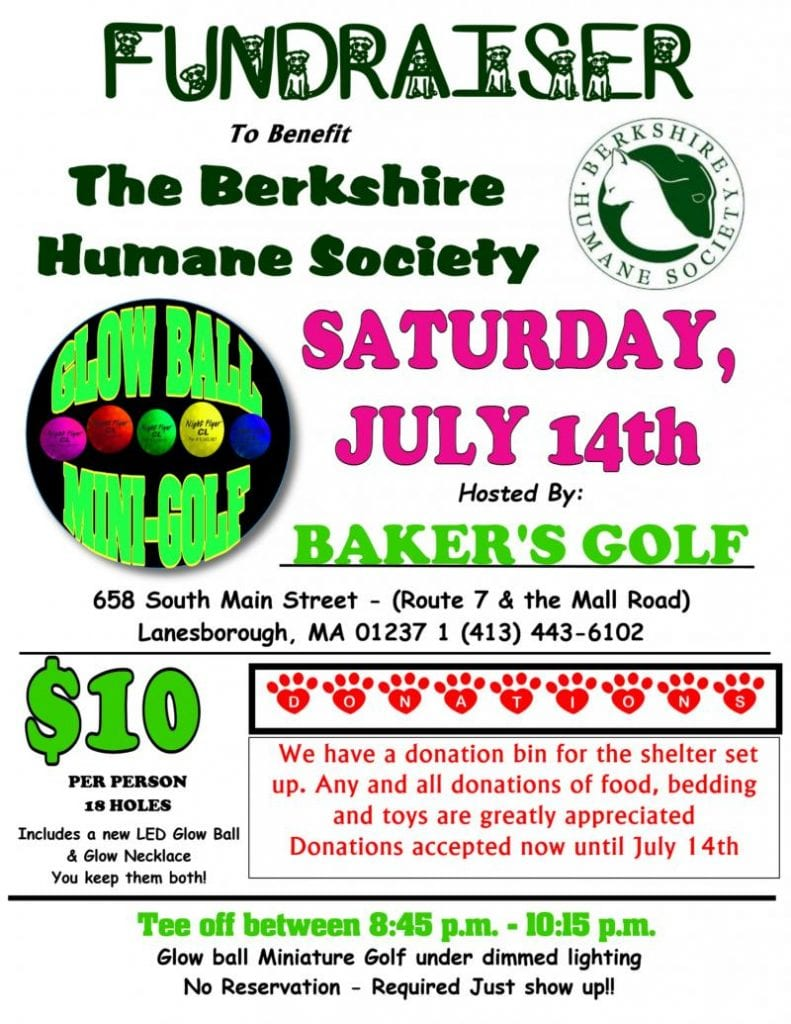 Glow Ball Mini-Golf Fundraiser @ Baker's Golf Center | Lanesborough | Massachusetts | United States