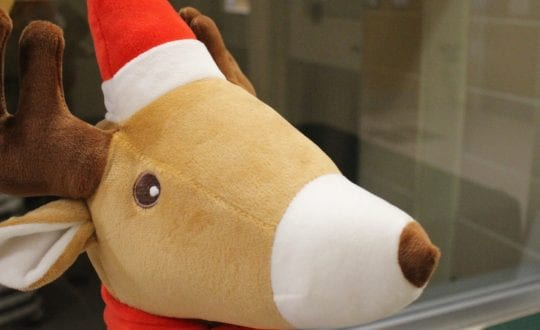 Plush reindeer head with Santa hat