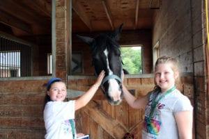 Equine Advocate Visit
