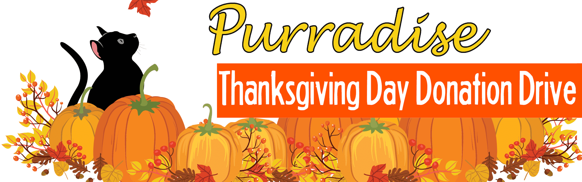 Thanksgiving Donation Drive at Purradise