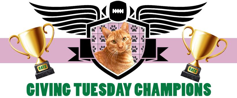 Team Cat Champions