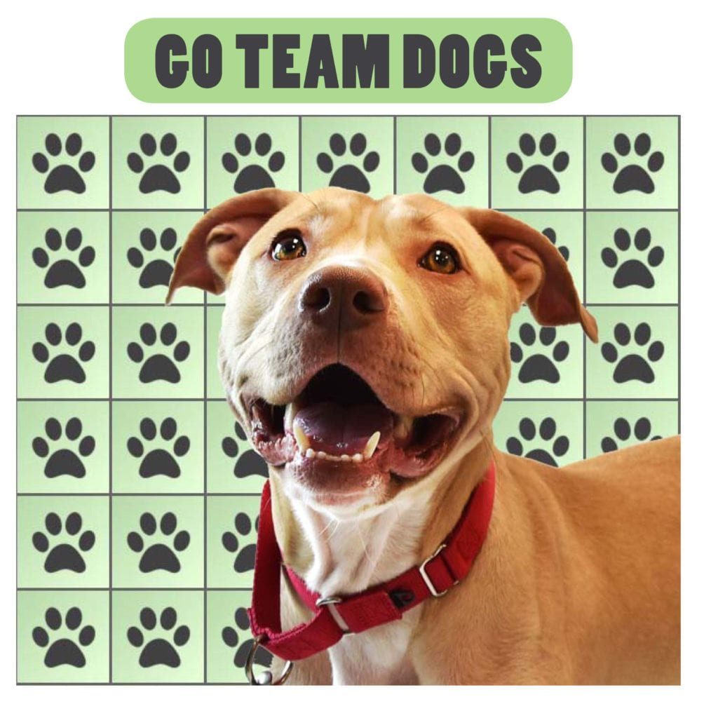 Giving Grid Team Dogs