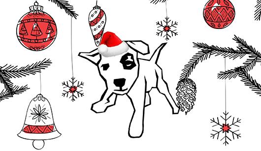 holiday portrait dog