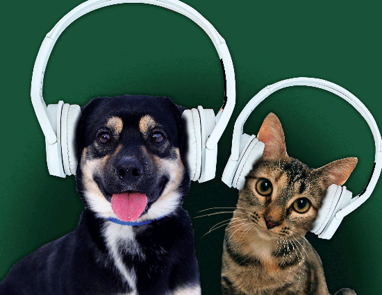 Cause for Paws Radiothon