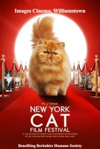 New York Cat Film Festival @ Images Cinema