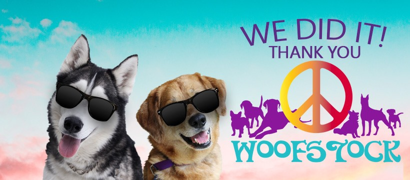 Woofstock 2019 We did it!